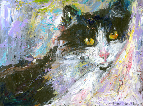 Tuxedo cat art (large view)