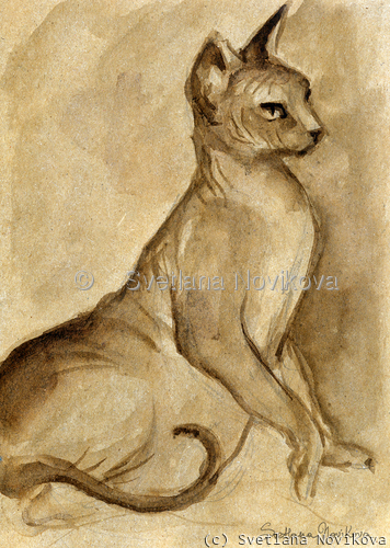 Sphynx Cat 44 Ink Drawing painting Svetlana Novikova (large view)