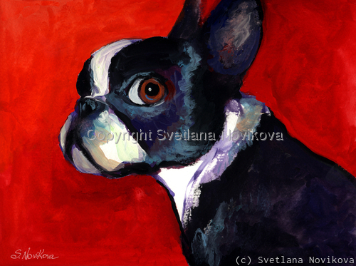 Boston Terrier Dog #2  Giclee Print  (large view)