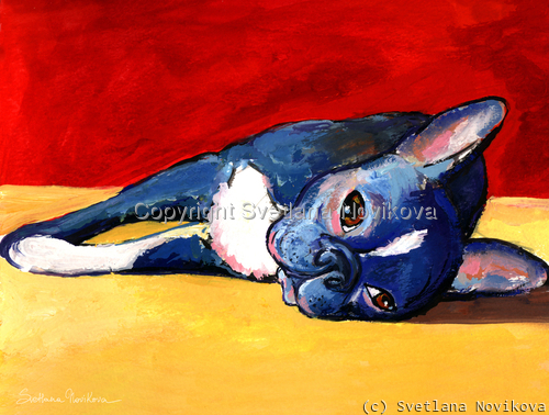 Boston Terrier #5 painting Giclee Print (large view)
