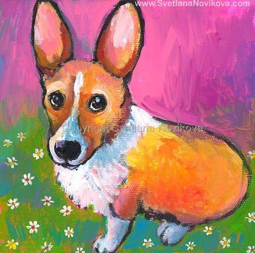 Corgi dog # 2 (large view)