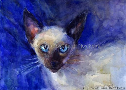 Siamese cat Watercolor portrait Painting Novikova (large view)