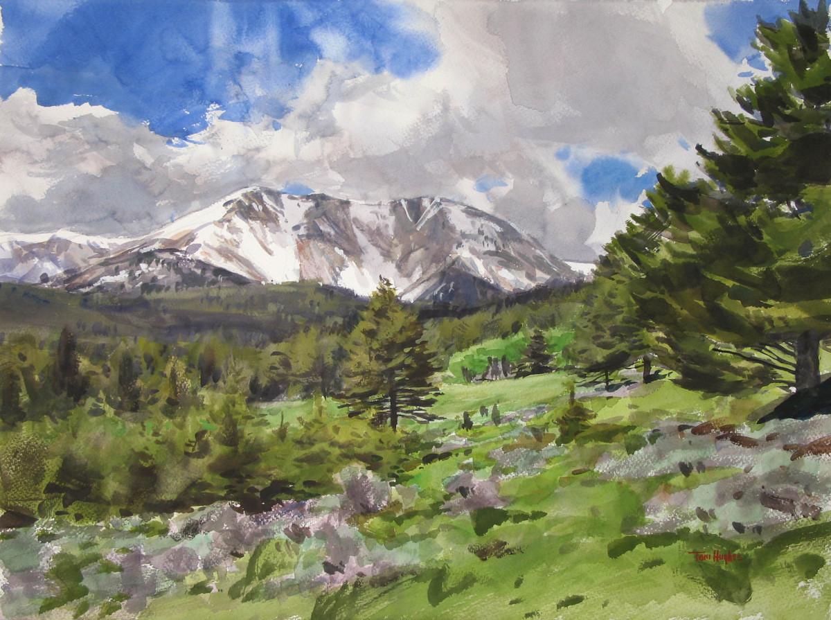 Bridger Mountain (large view)