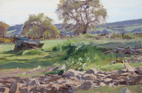 Sonoma landscape (large view)