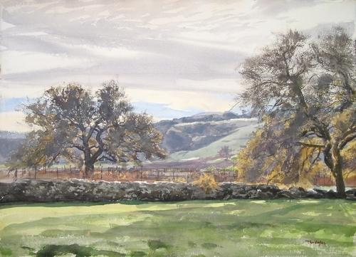 Winter vinyard (large view)