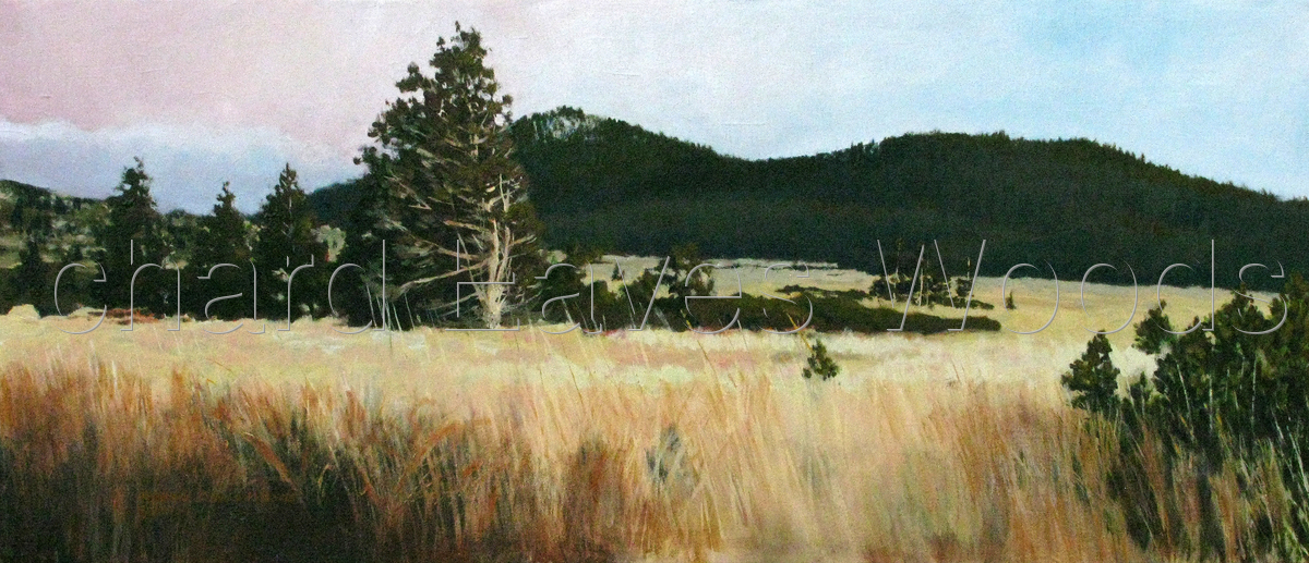 Tahoe Meadows (large view)